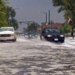John Gardner / The Surveyor
