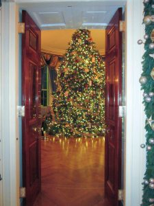 The offi cial White House Christmas tree pictured through the doors to the Blue Room, where a tree has been on display each holiday since 1909.