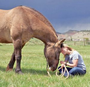 A veteran participating in the Hearts & Horses for Heroes program enjoys a moment with a horse.  Photo courtesy of Hearts and Horses for Heroes Inc.
