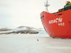 The sponsor for Bullett's work in Antarctica was the Korean Polar Research Institute (KOPRI) who used the Araon to travel to the remote continent.  photo courtesy of Terry Bullett