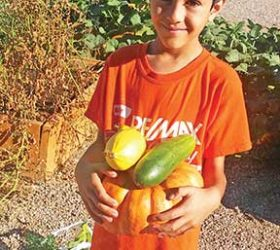 Ivy Stockwell third grader Jack DeSousa shows off fresh vegetables from picked from the Ivy Cares garden. Photo courtesy Lynne DeSousa