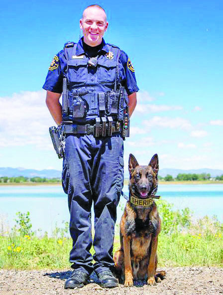 Larimer County Sheriff's Office K9, Tyr, to get donation of